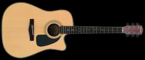 Fender Dg 10